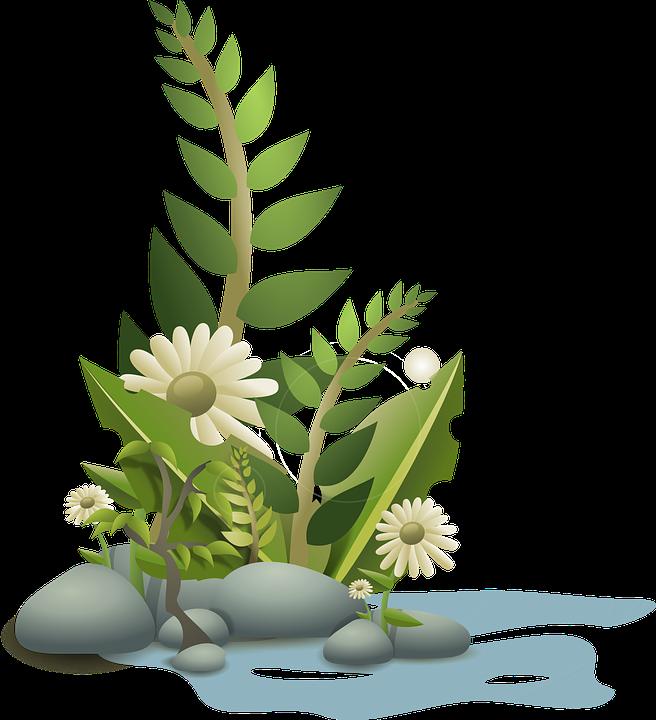 travy i pishhevye dobavki psoriaz