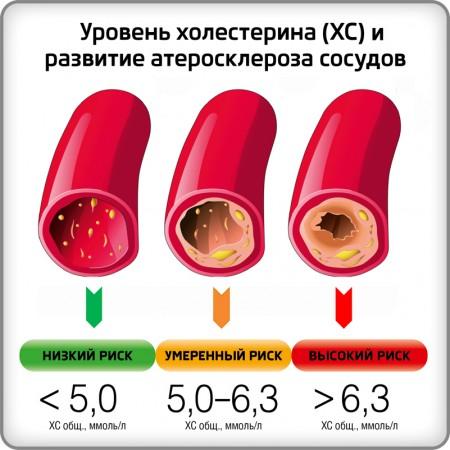 причина холестерина в крови у женщин