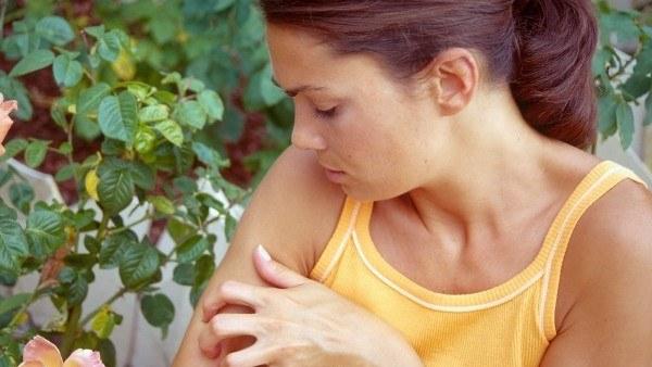 как лечить дерматит Народними средствами