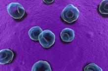 Хламидиоз: симптомы, как передается, лечение
