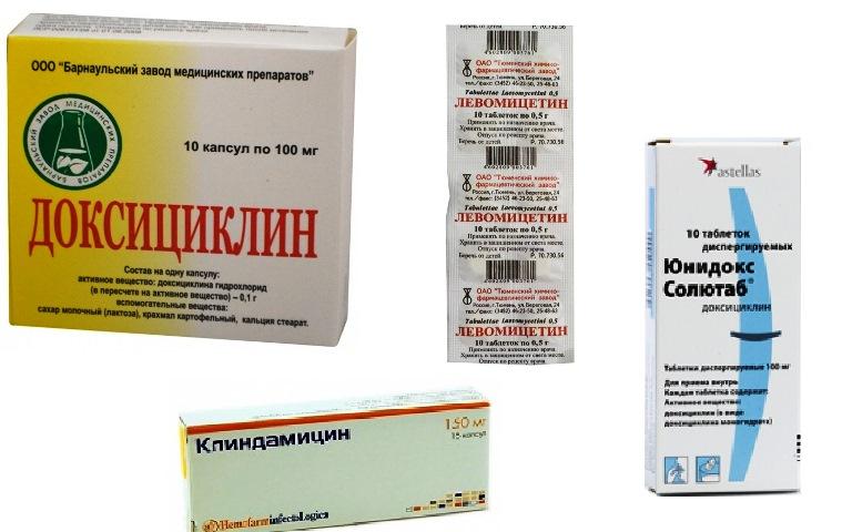 профилактические средства от паразитов в организме человека